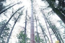 Quechee Gorge, Quechee, United States