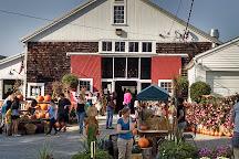 Cider Hill Farm, Amesbury, United States