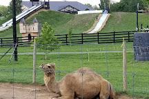 Leesburg Animal Park, Leesburg, United States