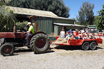 Rain, Hayne and Shine Farmyard, Balnarring, Australia