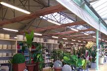 Greenhouse Garden Center, Pistoia, Italy