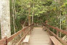 Parque Nacional de Ubajara, State of Ceara, Brazil