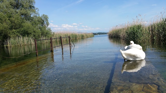 Schwerzenbach lake park
