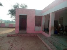 Govt. Primary School Chak 442 JB chiniot