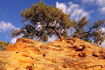 Navajo National Monument, Shonto, United States