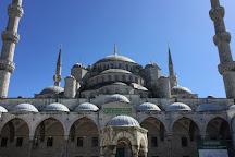 Anas Crecca Travel, Istanbul, Turkey