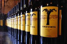 Trevista Vineyards, Valle de Guadalupe, Mexico