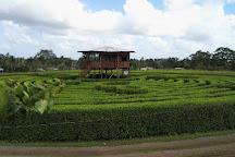 Laberinto de Katira, Katira, Costa Rica