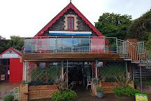 Ilfracombe Aquarium, Ilfracombe, United Kingdom