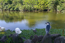 Daan Forest Park, Taipei, Taiwan