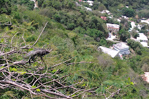 Charlotte Amalie Overlook, Charlotte Amalie, U.S. Virgin Islands