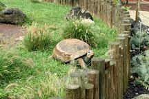 Columbian Park Zoo, Lafayette, United States