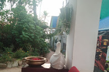 Adrika Ayurvedic Wellness and Yoga Retreat, Varkala Town, India