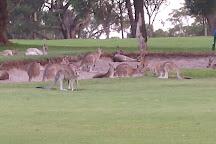 Nelson Bay Golf Club, Nelson Bay, Australia
