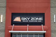 Sky Zone Trampoline Park, Jackson, United States