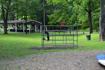 Havana Glen Park, Montour Falls, United States