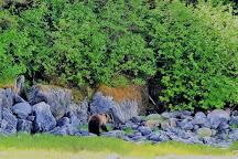 Allen Marine Tours, Juneau, United States