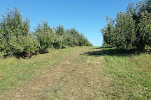 Berlin Orchards, Berlin, United States