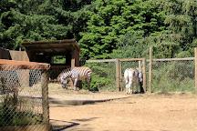 West Coast Game Park Safari, Bandon, United States