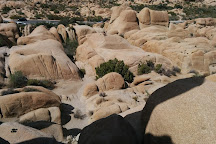 Skull Rock, Joshua Tree National Park, United States