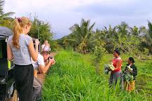 Village Tour Sri Lanka, Dambulla, Sri Lanka