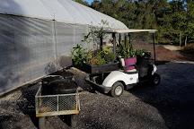 Mobile Botanical Gardens, Mobile, United States