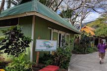 Flyin Hawaiian Zipline, Wailuku, United States