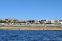 Memorial Wood, Stanley, Falkland Islands