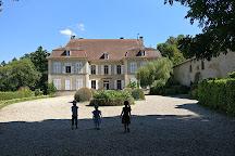 Chateau de Moidiere, Bonnefamille, France