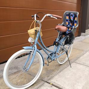 Bicicletas Vintage Perú - Alry Cycles 3