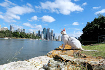 Kangaroo Point Cliffs Park, Brisbane, Australia