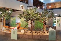 Anne Kolb Nature Center, Hollywood, United States