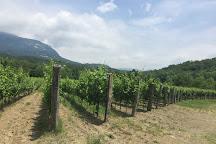 Winery Tilia Estate, Dobravlje, Slovenia