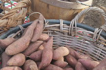 Port Royal Farmers Market, Port Royal, United States