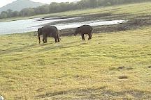 Sarath Safari Sigiriya, Sigiriya, Sri Lanka