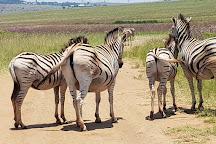 Rietvlei Nature Reserve, Pretoria, South Africa