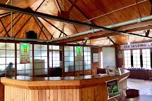 Ceylon Tea Museum, Kandy, Sri Lanka