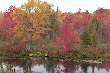 Kawartha Highlands Provincial Park, Apsley, Canada