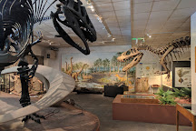 BYU Museum of Paleontology, Provo, United States