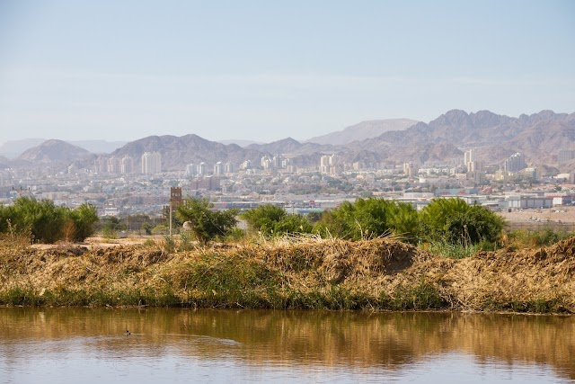 Aqaba Bird Observatory