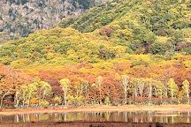 Odashirogahara, Nikko, Japan