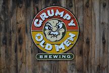 Grumpy Old Men Brewing, Blue Ridge, United States