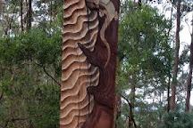 Korora Lookout, Korora, Australia