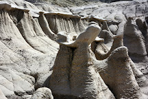 Bisti/De-Na-Zin Wilderness, Farmington, United States