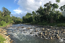 Carabali Rainforest Park, Luquillo, Puerto Rico