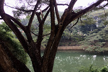 Karamana River, Kovalam, India