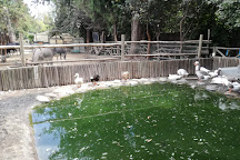 Buin Zoo, Buin, Chile