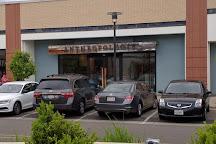 Hilldale Shopping Center, Madison, United States
