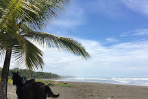 The Riding Adventure, Esterillos Este, Costa Rica