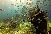 Dive Funatics, Lapu Lapu, Philippines